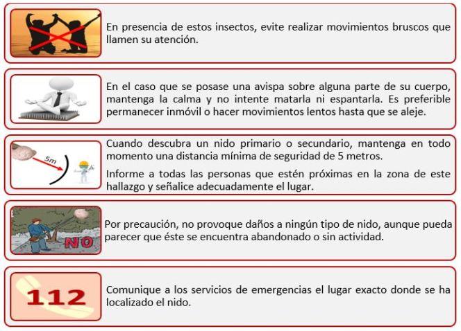 Medida Preventiva3