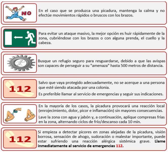 Medida Preventiva8